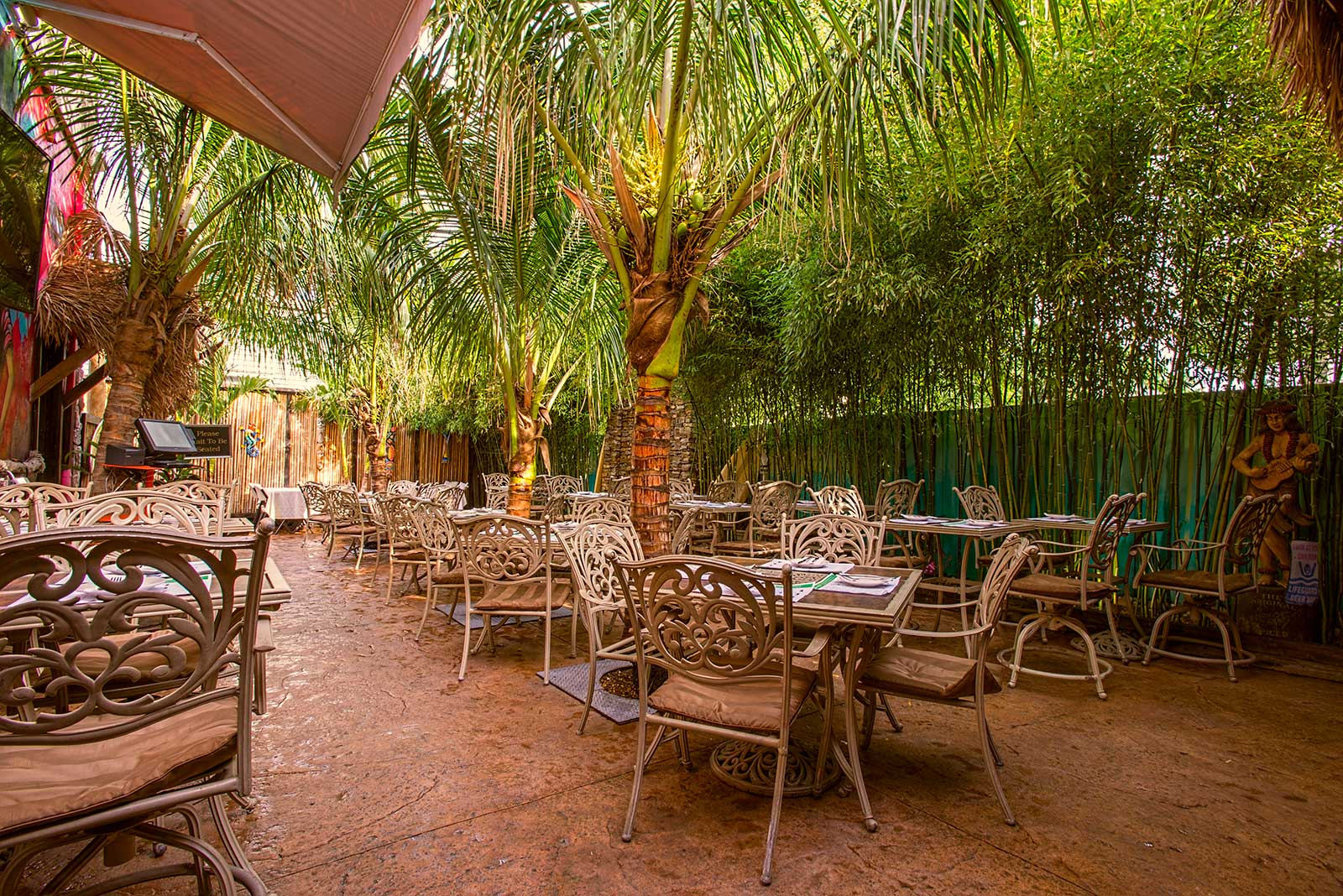 Outdoor Patio With Real Palm Trees In NJ
